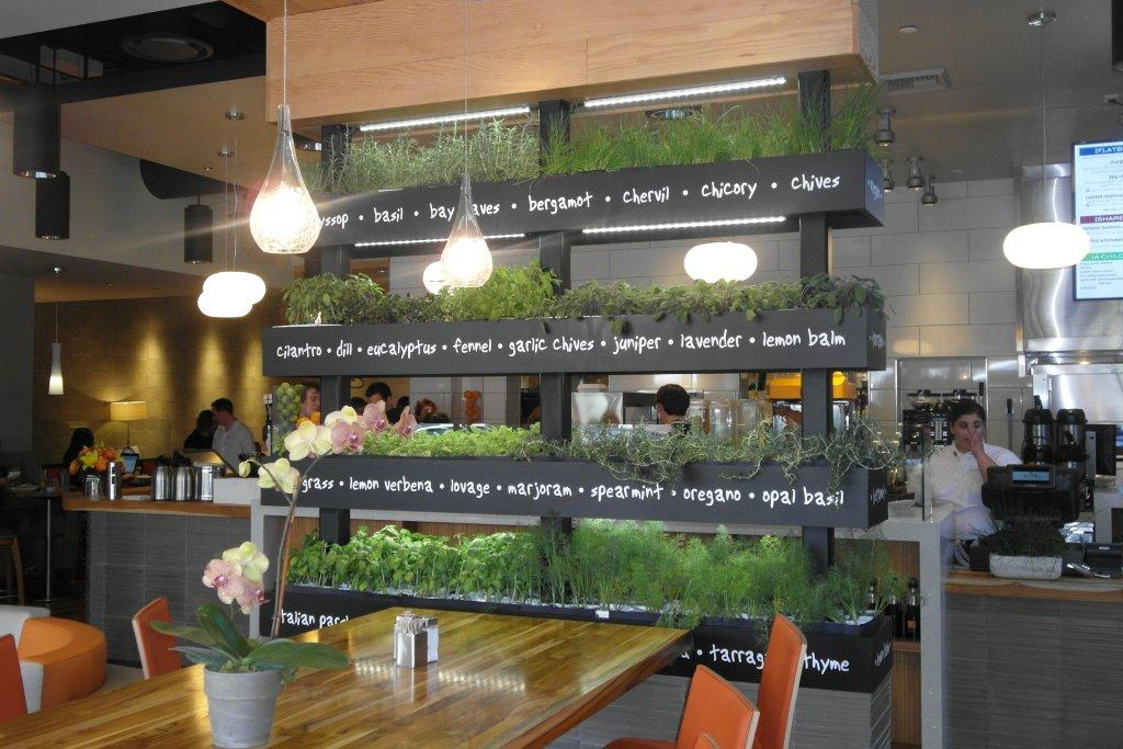 Lyfe kitchen s green restaurant design tips trends and for Cuisine on the green